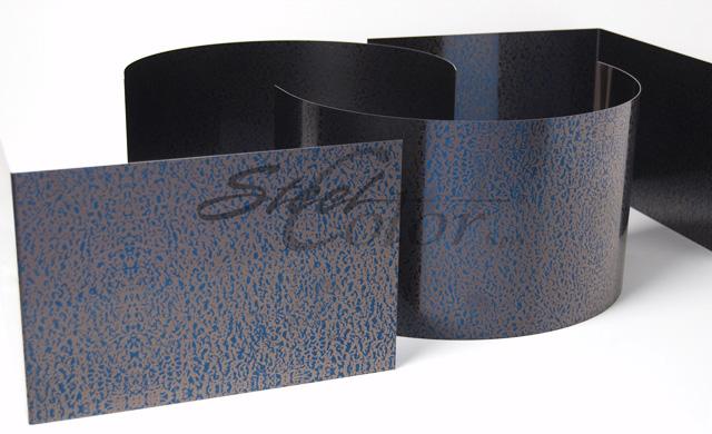 SC 301 Blu
